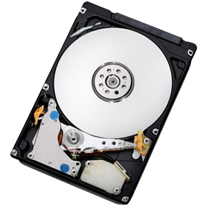 IBM 1TB 1000GB Serial ATA internal hard drive