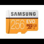 Samsung 256GB, MicroSDXC EVO 256GB MicroSDXC UHS-I Class 10 memory card