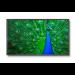 "NEC MultiSync C651Q 165,1 cm (65"") LED 4K Ultra HD Pantalla plana para señalización digital Negro"