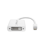 PNY Mini DisplayPort - DVI Mini DisplayPort DVI White