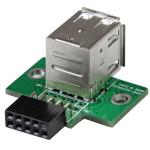 StarTech.com Adaptador Header USB de 2 Puertos para Tarjeta Madre