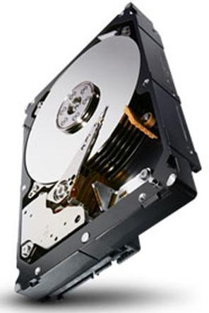 "Seagate Constellation 1TBGB SATA, 7200rpm 3.5"" 1000 GB Serial ATA"