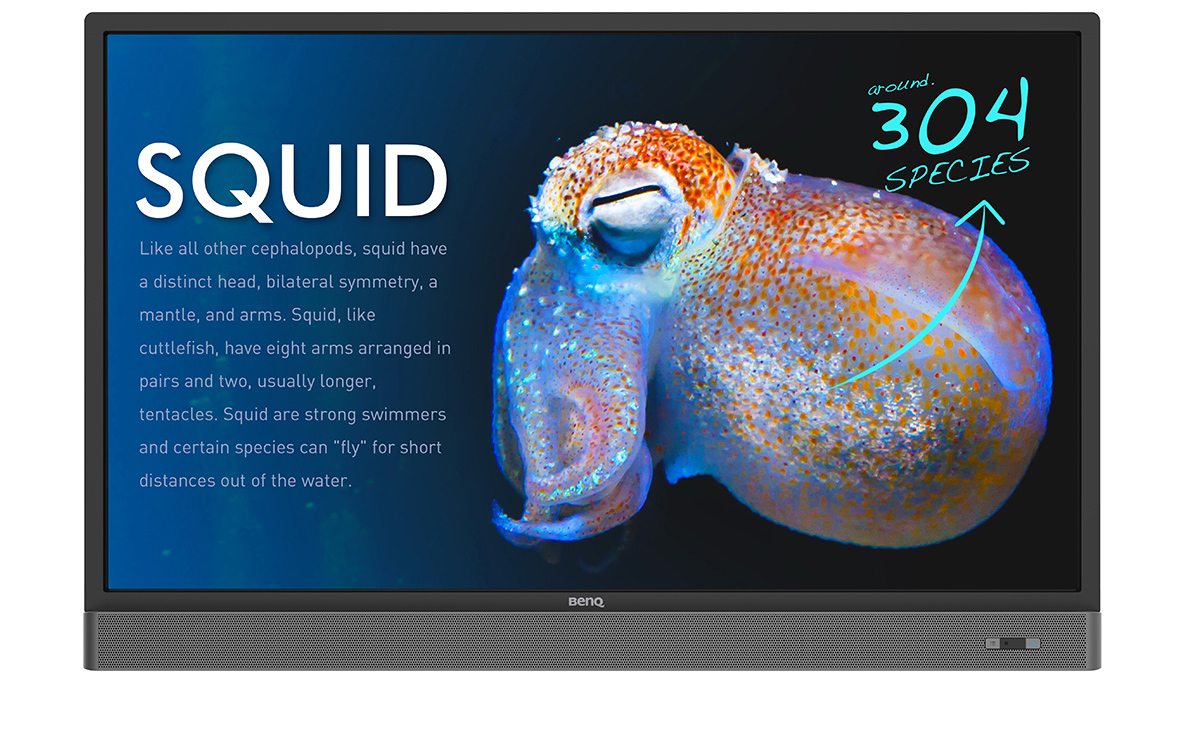 """Benq RP553K Interactive Touch Screen Display - 55"""" LED 4K Ultra HD Black Includes Free Wall Bracket"""