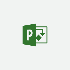 Microsoft Project Standard 2019 Full 1 license(s) English