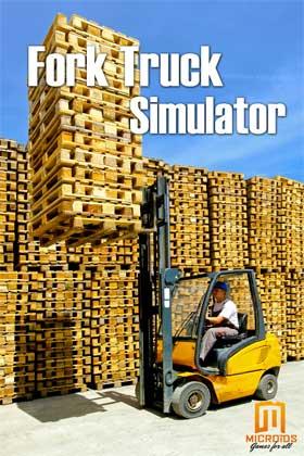 Nexway Forklift Truck Simulator vídeo juego PC Básico Español