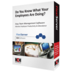 NCH Software FlexiServer