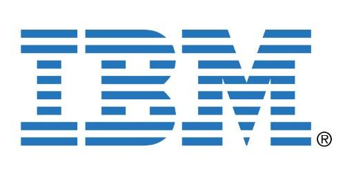 IBM ServeRAID M1100 Series Zero Cache/RAID 5 Upgrade f/ System x 1 license(s)