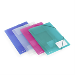 Rexel Ice Four Fold Flap File Assorted Colours (4)