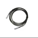 Mellanox Technologies MCP1600-E00AE30 InfiniBand cable 0.5 m QSFP28 Black