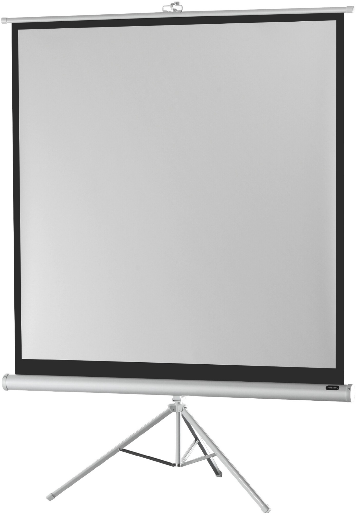 Celexon Tripod Economy 1:1 White projection screen