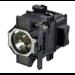 Epson V13H010L81 UHE projector lamp