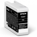 Epson UltraChrome Pro Original Photo black 1 pc(s)