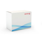 Xerox Storage Cart