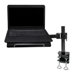 Newstar notebook desk mount