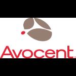 Vertiv Avocent 2YSLV-ACS48PT maintenance/support fee 2 year(s)