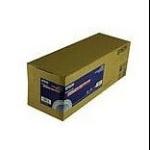 "Epson Premium Glossy Photo Paper (250) 24"" x 100' papel fotográfico"