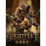 Warner Bros Gauntlet, PC video game Basic English