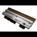 Zebra G105910-053 cabeza de impresora Transferencia térmica