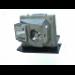 Diamond Lamps BL-FS300B projector lamp 300 W