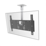"PMV PMVCEILINGLG flat panel ceiling mount 165.1 cm (65"") Black,White"