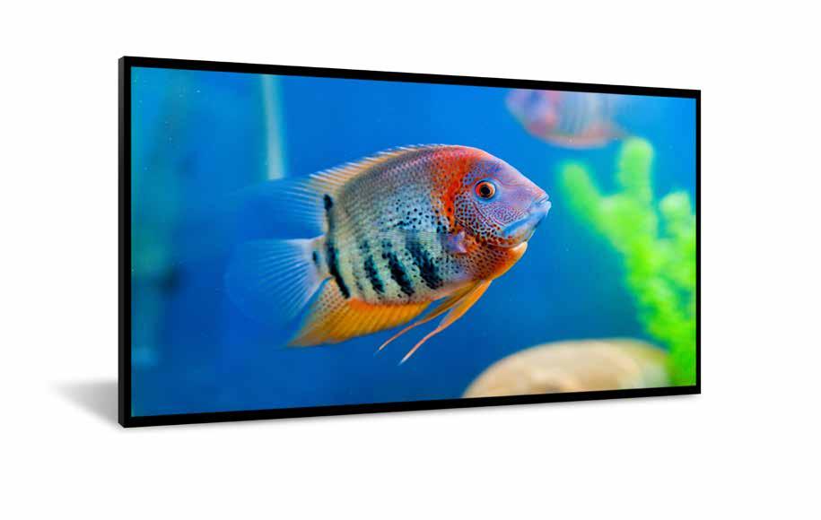"""DynaScan DI551ST2 pantalla de señalización 138,8 cm (54.6"""") LCD Full HD Pantalla plana para señalización digital Negro"""