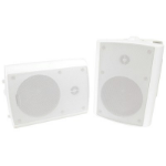 "Generic 6.5"" Indoor/Outdoor Speaker"