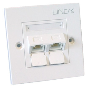 Lindy CAT6 Single Wall Plate White