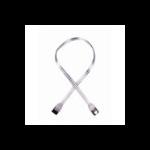 Akasa SATA2-100-SL SATA cable 1 m Transparent