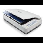 Plustek OpticPro A320L 1600 x 1600 DPI Flatbed scanner Grey A3