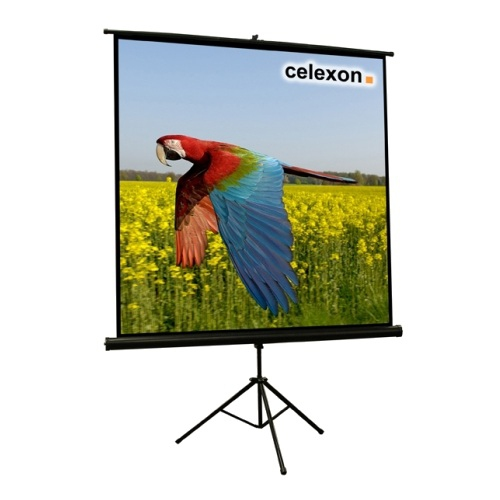 Celexon 1090014 1:1 Black,White projection screen