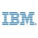 IBM Trackpoint stick cap