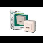 ASSMANN Electronic CAT 5e, Cl. D RJ-45 Wit wandcontactdoos