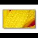 "NEC MultiSync ME501 Pantalla plana para señalización digital 127 cm (50"") VA 4K Ultra HD Negro"