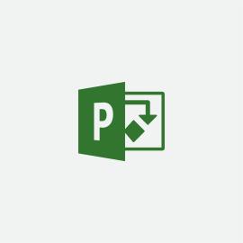 Microsoft Project Professional 2019 1 licencia(s) Plurilingüe