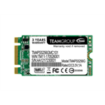Team Group TM4PS5256GMC101 256GB M.2 Serial ATA III internal solid state drive