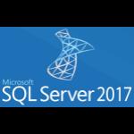 Microsoft SQL Server 2017 Standard 228-11135