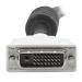 StarTech.com 25 ft DVI-D Dual Link Cable - M/M DVIDDMM25