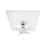 Amer Networks AMRDCP100KIT project mount ceiling White