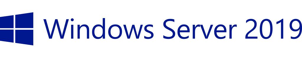 Hewlett Packard Enterprise Microsoft Windows Server 2019 5 license(s) License Multilingual