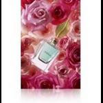 Epson C13S045526 Matte Pink inkjet paper