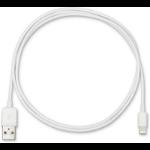 eSTUFF ES601101-C1 lightning cable 1 m White