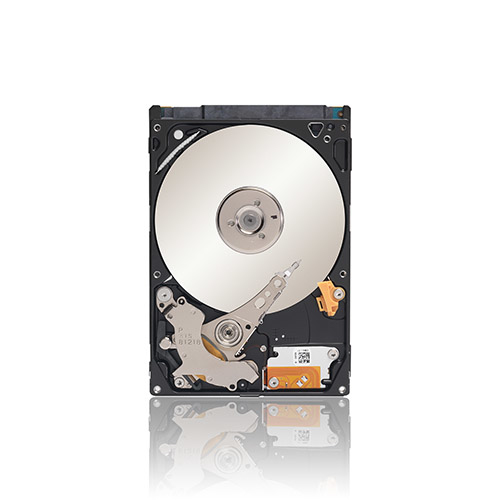 Seagate Momentus 500GB