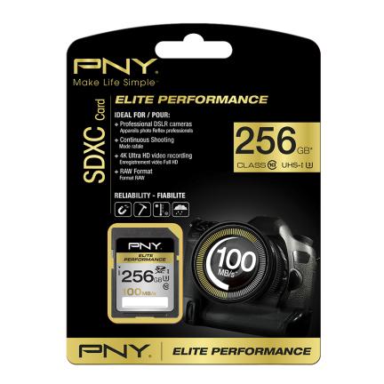 PNY 256GB SDXC class 10 256GB SDXC UHS-I Class 10 memory card