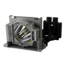 GO Lamps GL244 projector lamp 250 W P-VIP