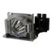 GO Lamps GL244 lámpara de proyección 250 W P-VIP