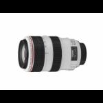 Canon EF 70-300mm f/4-5.6L IS USM SLR Telephoto lens Black,White