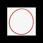Olympus O-Ring for UFL-1UFL-2