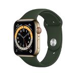 Apple Watch Series 6 OLED 44 mm Oro 4G GPS (satélite)