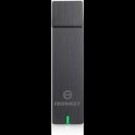 Kingston Technology D250 4GB USB 2.0 Type-A Grey USB flash drive