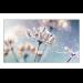 """Samsung VM46R-U 116,8 cm (46"""") LED Full HD Pantalla plana para señalización digital Negro"""